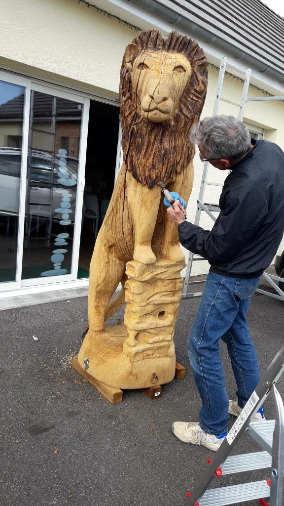 le lion en cours de modification
