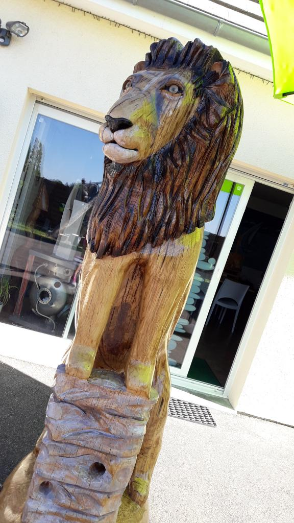 LE LION au soleil