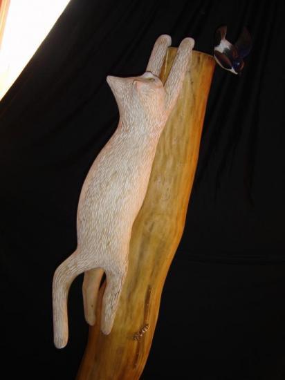 Chat et hirondelle